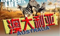 如何寻找靠谱的澳大利亚当地旅行社。