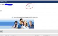 如何快速在线检查旅游商务签证表格